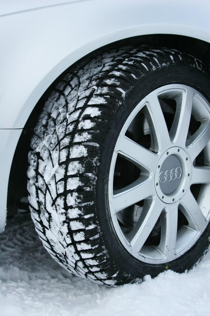 Dunlop Winter Resized